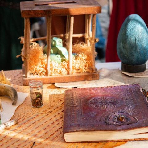 """Les expériences du dragonologue - Troupe médiévale-fantastique """"Les Arpenteurs de Guldrasyl"""" de la compagnie Rêves Temporels"""